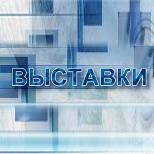 Выставки Новоалтайска